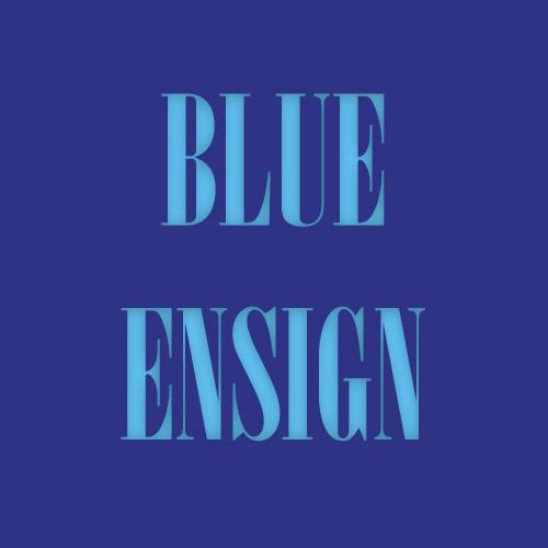 blueensign.co.za